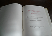 Dne 17. 5. 2017 byla slavnostně zapsána do Knihy cti MČ Prahy 3 Olga Fierzová in memoriam